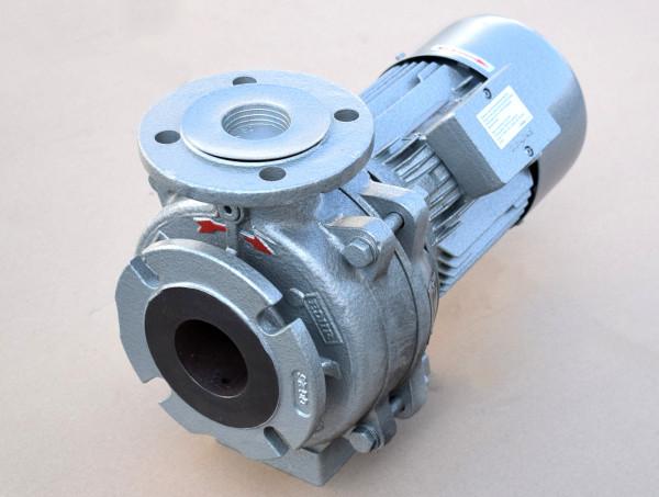Edur Blockpumpe einstufige Kreiselpumpe Siemens Antriebsmotor