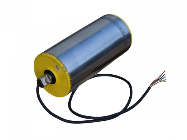 Interoll Trommelmotor Rollenlänge 300 mm Rollendurchmesser 135 mm Umlenkrolle